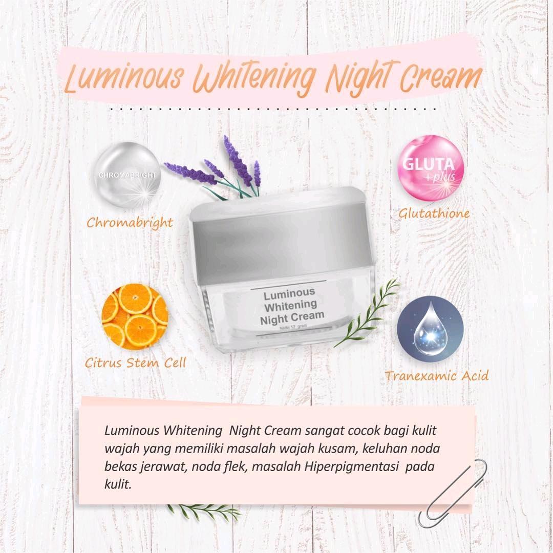 Kandungan Dalam Night Cream Luminous
