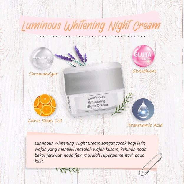 Kandungan Dalam Night Cream Luminous